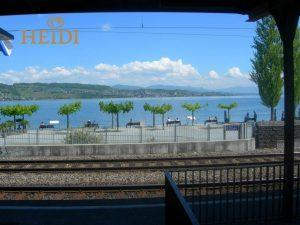 Zurich See