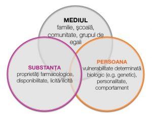 Dependenta Model tripartit